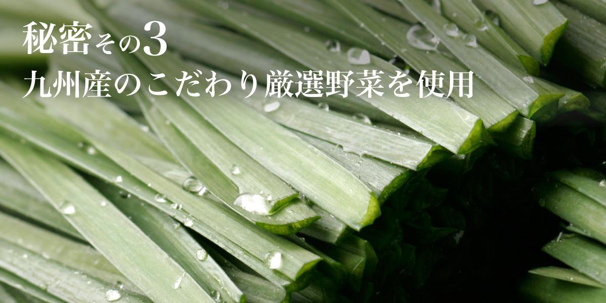 九州産のこだわり厳選野菜を使用