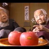 1992年第1次もつ鍋ブーム!見事に去る!